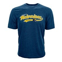 Michigan Wolverines NCAA Football Stature T-Shirt
