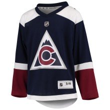 Colorado Avalanche NHL Premier Youth Replica Alternate Hockey Jersey