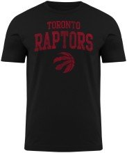 Toronto Raptors NBA Distressed Arch T-Shirt (Black)