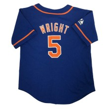 New York Mets David Wright Majestic Child Alternate Replica Baseball Jersey (Royal)